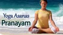 Pranayam & Yoga Asanas – The Various Yog Mudra