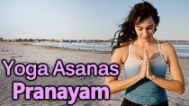 Pranayam & Yoga Asanas – Yoga For Beginners